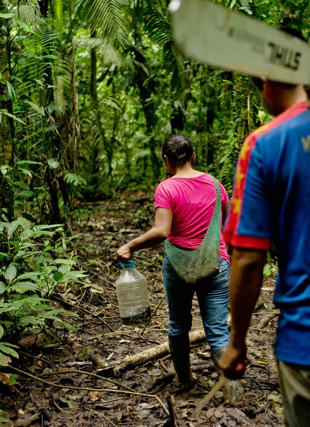 Forest Governance in Ecuador
