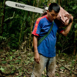 Oil, Roads, Settlers and Timber: Changing landscapes and livelihoods in Ecuador's Amazon
