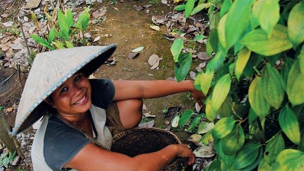 rural-livelihoods-img